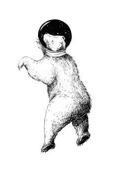 Weltraumbär